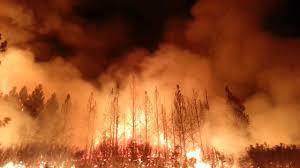 Californië: de vlammen van het kapitaal